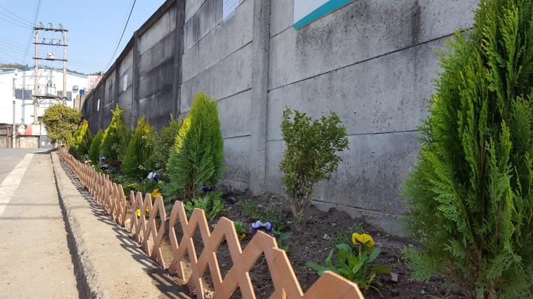 19년 KT&G동네한바퀴 꽃길조성-태양마을 (8).jpg